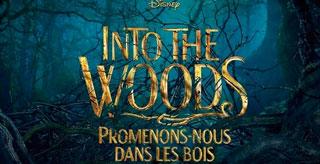 NTO THE WOODS - Promenons nous dans les bois - Bande Annonce VOST
