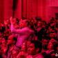 Post modern jukebox tombe amoureux de la Tunisie